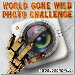 Photo Challenge2