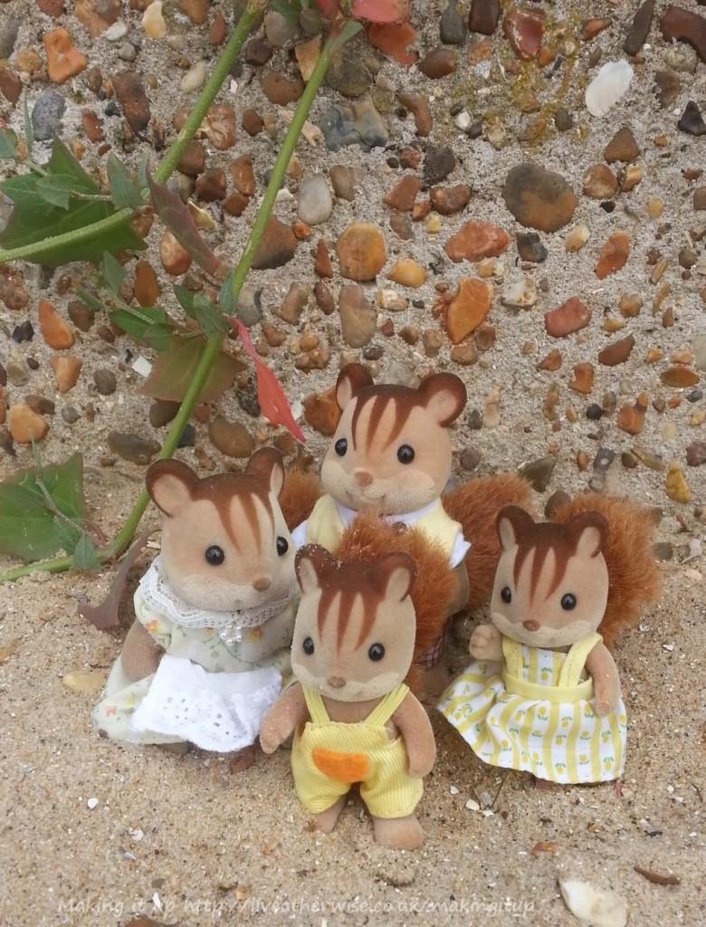 sylvanians at the beach