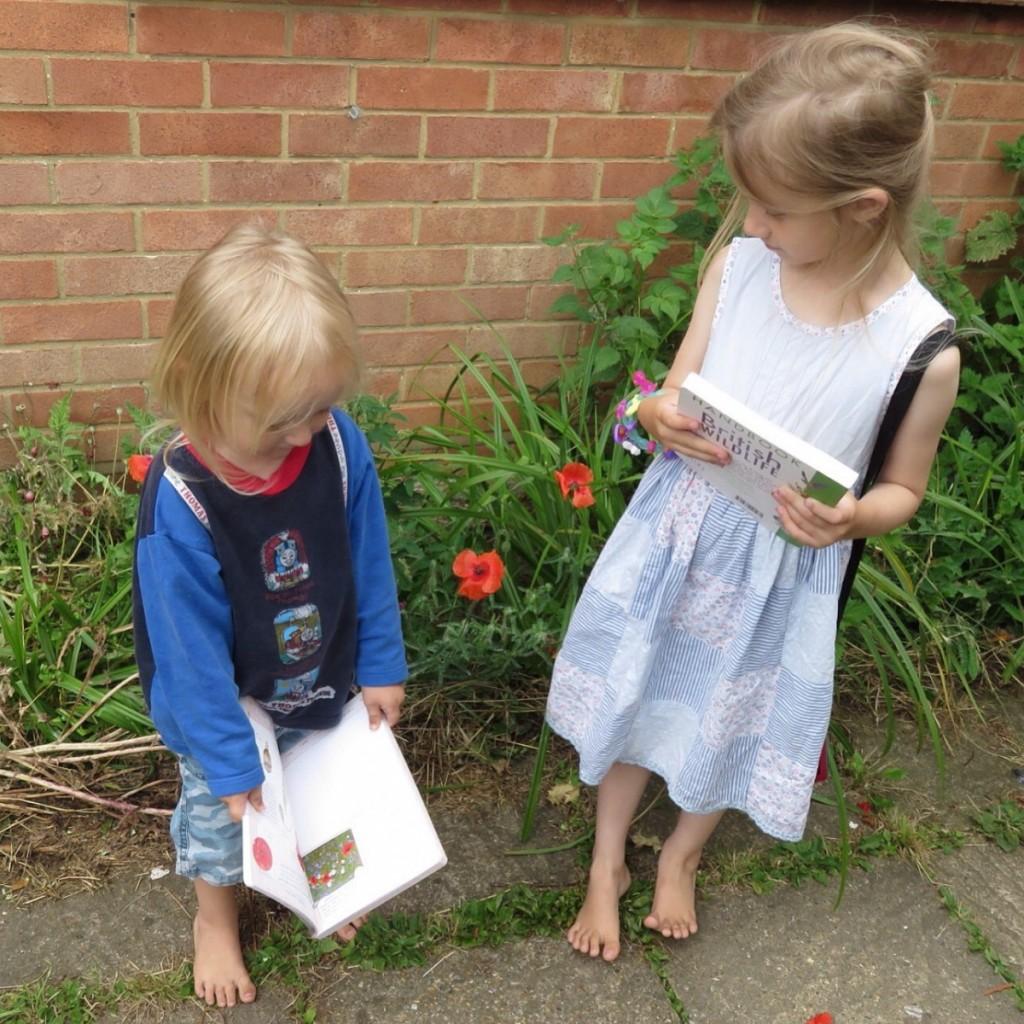 identifying poppies