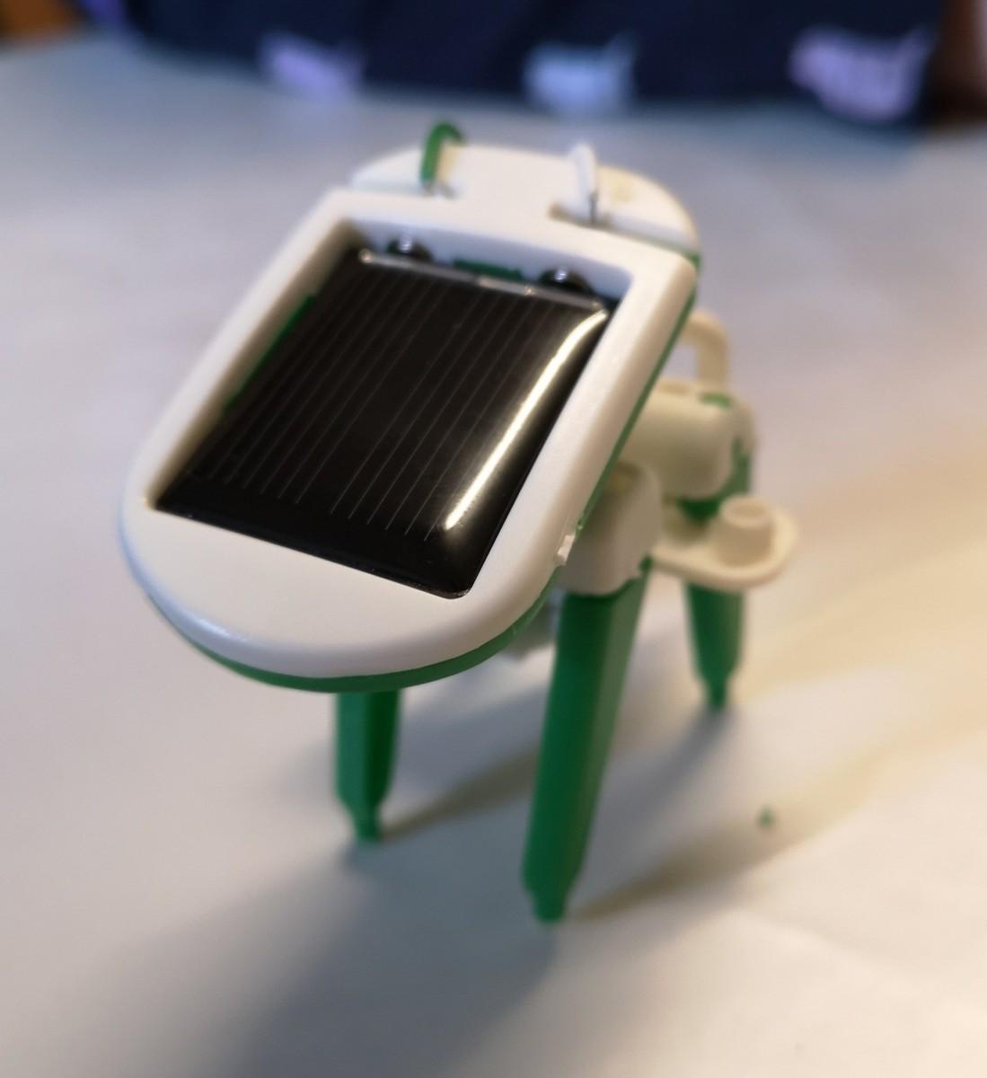 Solar puppy