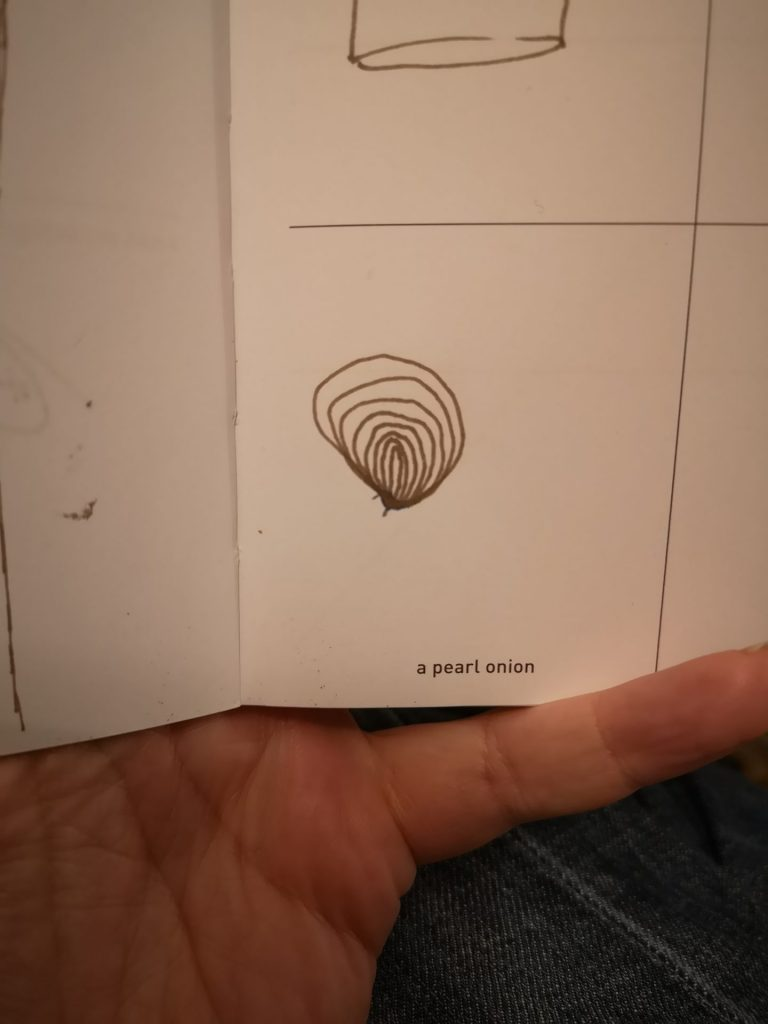 Pearl onion sketch